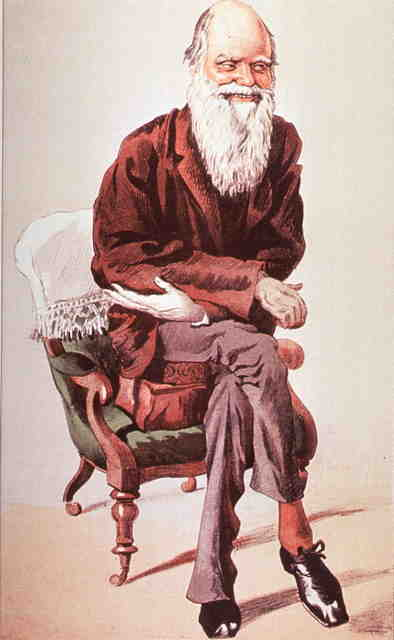 A sketch of charles darwin seated in and arm chair with legs crossed, arms crossed, leaning forward with a smile on his face.